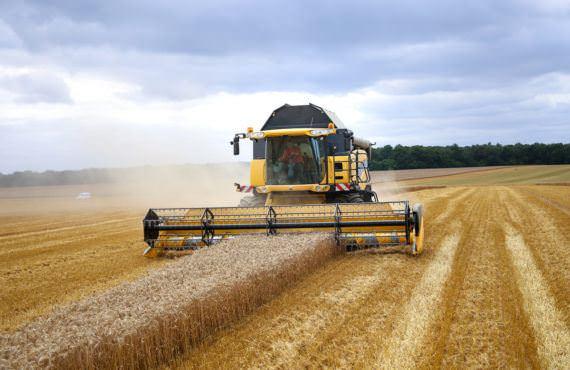 L'agriculture, le terroir et le goût